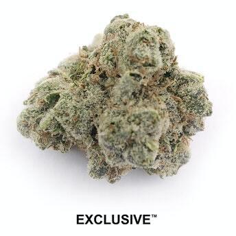 exclusive og kush